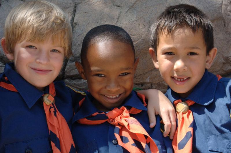 three little boy scouts